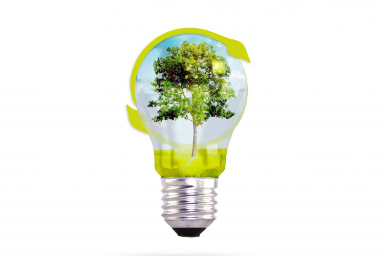 EcoRefurb's Impact